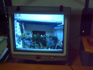 Pengalaman Saya Menggunakan Komputer 1
