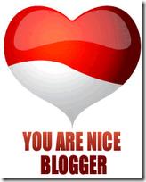 youareniceblogger